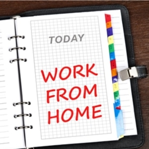 2.18 workathome_intro